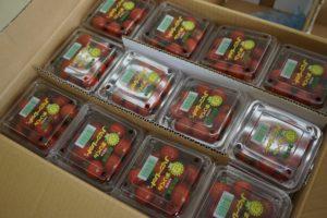 店内野菜写真 トマト