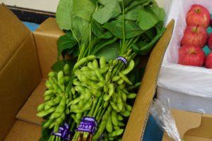 店内野菜写真1
